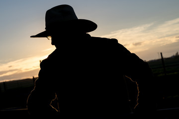 Silhouette of a cowboy on a ranch