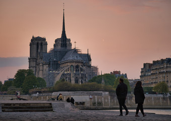 Wall Mural - Notre Dame de Paris, one day before the fire...