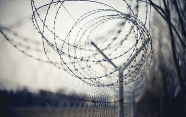Abstract blurred background with barbed wire. Wall mural