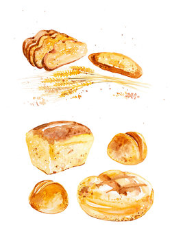 Watercolor illustration of wheat ears, different buns and bread among abstract drops of grains. Isolated on white background