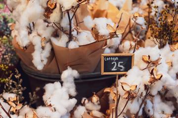 cotton flowers for sale
