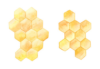 Honeycombs isolated on white background