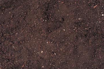 Potting soil top view texture