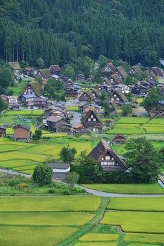 白川郷 shirakawago  秋