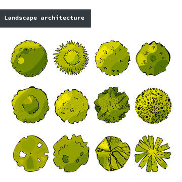 Top view vector set of different green trees.Hand drawn illustration for landscape design, plan, maps.Collection of cartoon trees, isolated on the white background.