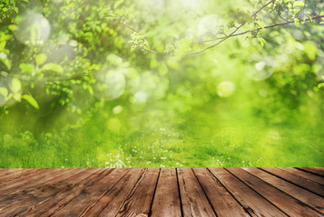 Wooden table and spring forest background