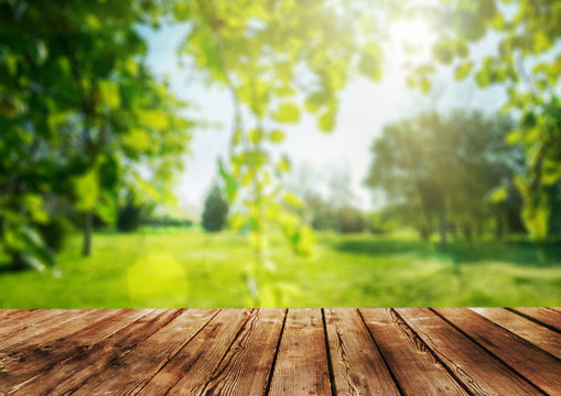 a Wooden table and spring forest background
