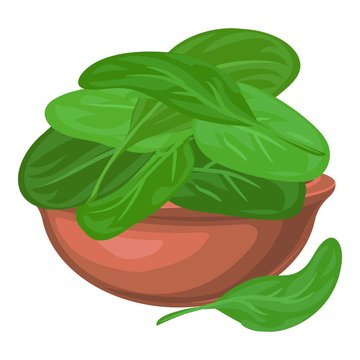 Spinach leaf in bowl icon. Cartoon of spinach leaf in bowl vector icon for web design isolated on white background