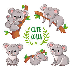 Vector illustration with koala in various poses.