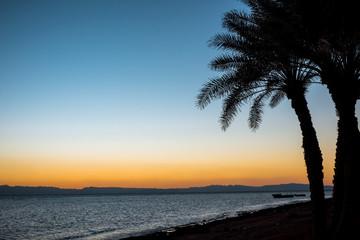 Coast of the Red Sea, in Gulf of Aqaba, near Dahab.Egypt