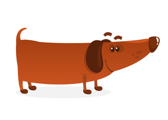 Cartoon Funny Weiner Dog. Vector Illustration