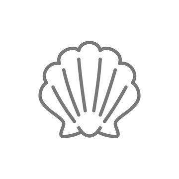 Shell, seashell line icon.