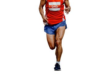 Wall Mural - muscular legs athlete runner marathon running isolated