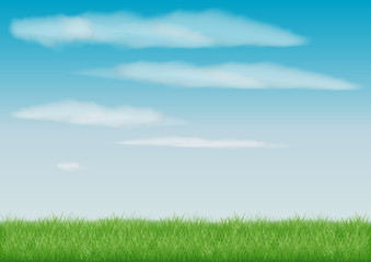 Printed kitchen splashbacks Light blue beautiful view green summer meadow stretches to the horizon. a field of grass. blue light sky with white clouds. realistic vector drawing