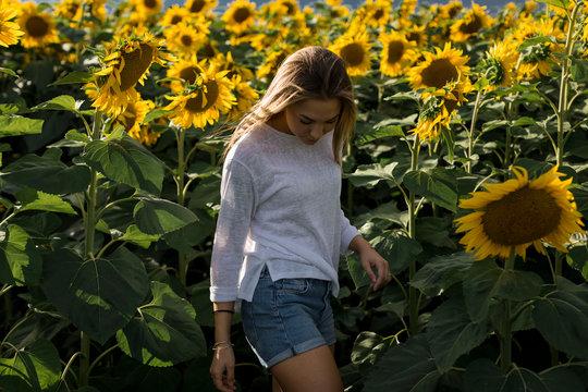 Lonely woman in a sunflower field in summer