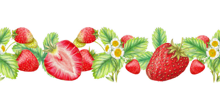 Hand drawn  border of sweet juicy strawberries