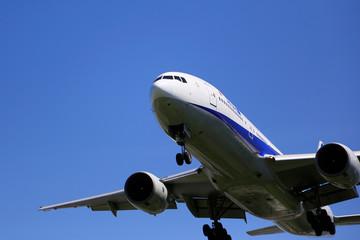 飛行機 Fototapete