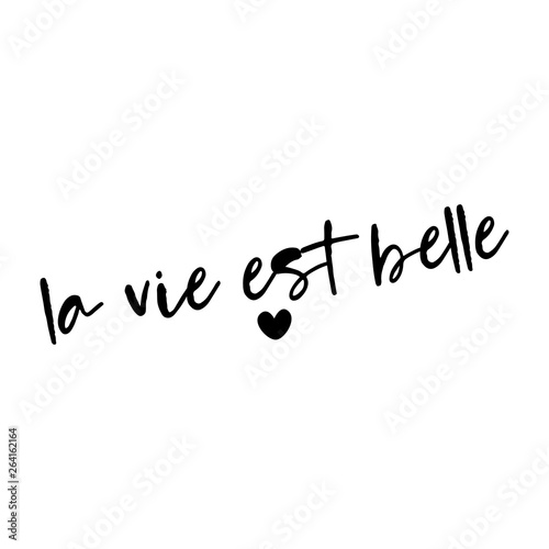 La Vie Est Belle French Saying Handwritten Lettering