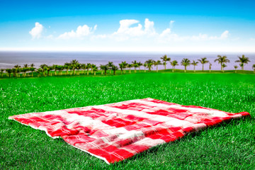 Blanket on grass and free space for your decoration
