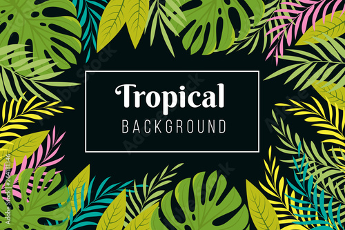 Tropical Background Rainforest Palm Tree Leaves Frame