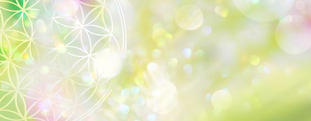 Vorlage Blume des Lebens mit Textfreiraum in zartgrünem Lichterfeld