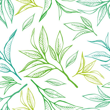 Floral seamless pattern with tea leaves in sketch style. Hand drawn tea leaves background. Vector illustration on white. For textile, paper, decoration and wrapping