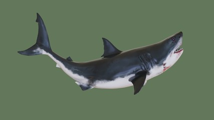 Toothy shark. 3d illustration