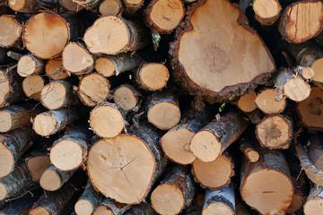 Poster de jardin Texture de bois de chauffage Pile of a birch firewood