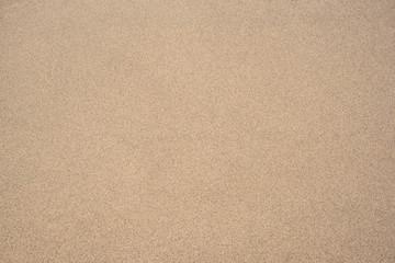 arena blanca de mar