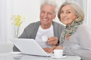 Portrait of happy senior bookkeepers working with laptop