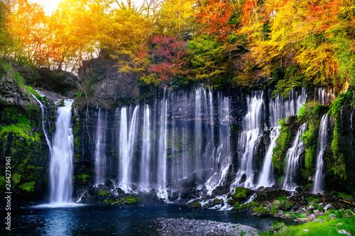 Wall mural Shiraito waterfall in Japan.