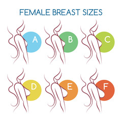 Set of silhouettes icons of various female breast size, body side view. Sizes of busts from small to large.