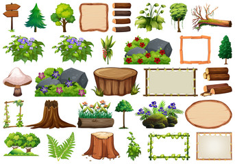 Set of nature element for decor
