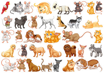 Set of differents pets
