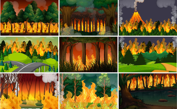 Set of wild fire background