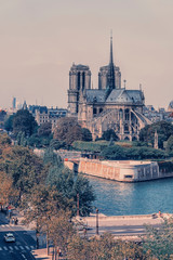 Fototapete - Notre-Dame cathedral in Paris