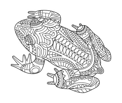Hand drawn frog for coloring book for adult
