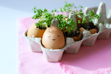 The fresh green grass growing in an egg shell with the funny persons drawn on it. The idea of spring creativity for easter day