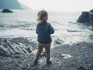 Toddler standing on the beach