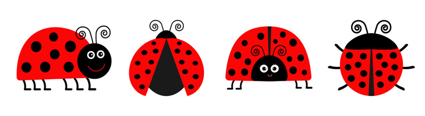 Ladybug Ladybird icon set line. Funny insect. Cute cartoon kawaii funny character. Flat design. White background. Isolated.