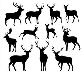 Graphic black silhouettes of wild deers – male, female and  roe deer