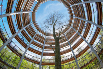 Steigerwald Baumpfad Ebrach