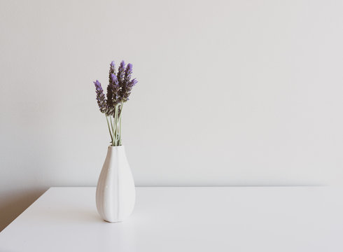 Close up of lavender sprigs in small white vase on side table against neutral wall background (selective focus)
