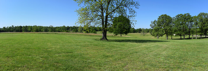 Panorama of Brice's Crossroads Battlefield in Mississippi