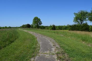 Walking path in Brice's Crossroads Battlefield in Mississippi
