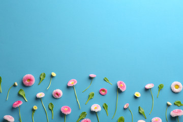 Flat lay composition with spring daisy flowers and space for text on color background Fototapete