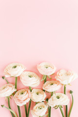 Wall Mural - Pastel pink ranunculus flowers bouquet on pink background. Minimal floral concept. Flat lay, top view.