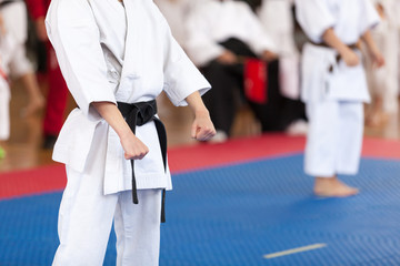 Karate practitioner body position during competition. Martial arts. Wall mural