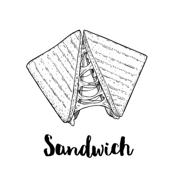 Sandwich with melted cheese. Grilled fast or street food. Lunch restaurant menu. Hand drawn sketch style illustration isolated on white background.