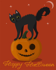 Black kitten on a halloween pumpkin. greeting card to halloween. vector image